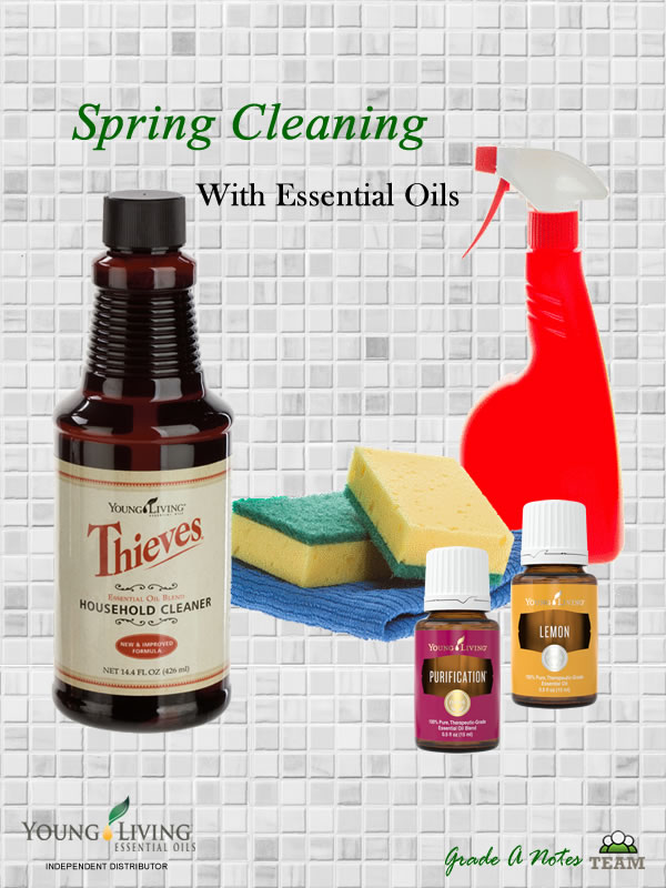 Diy Thieves Essential Oil Cleaner Diy Do It Your Self